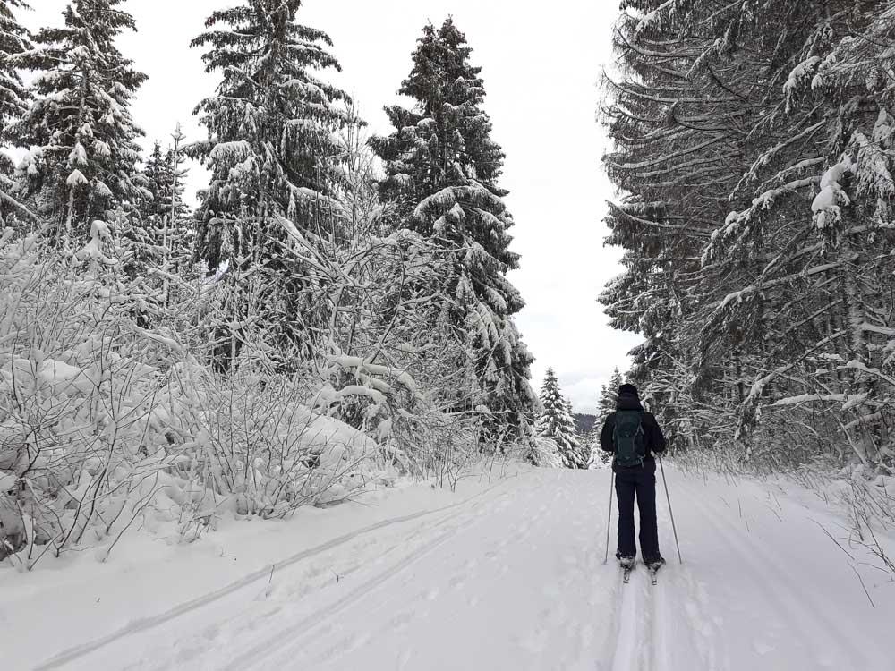 ski de fond - les pistes du Mont Ramey