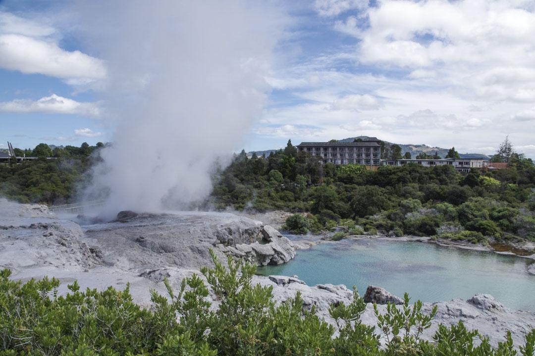 Te Puia, une zone géothermique au coeur de la ville
