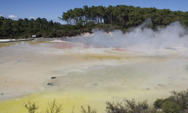 Que voir dans la région Rotorua en Nouvelle-Zélande ?