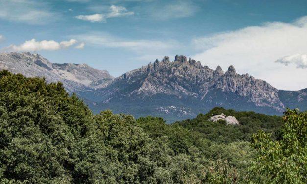 Que voir dans la région de l'Alta Rocca en Corse ?