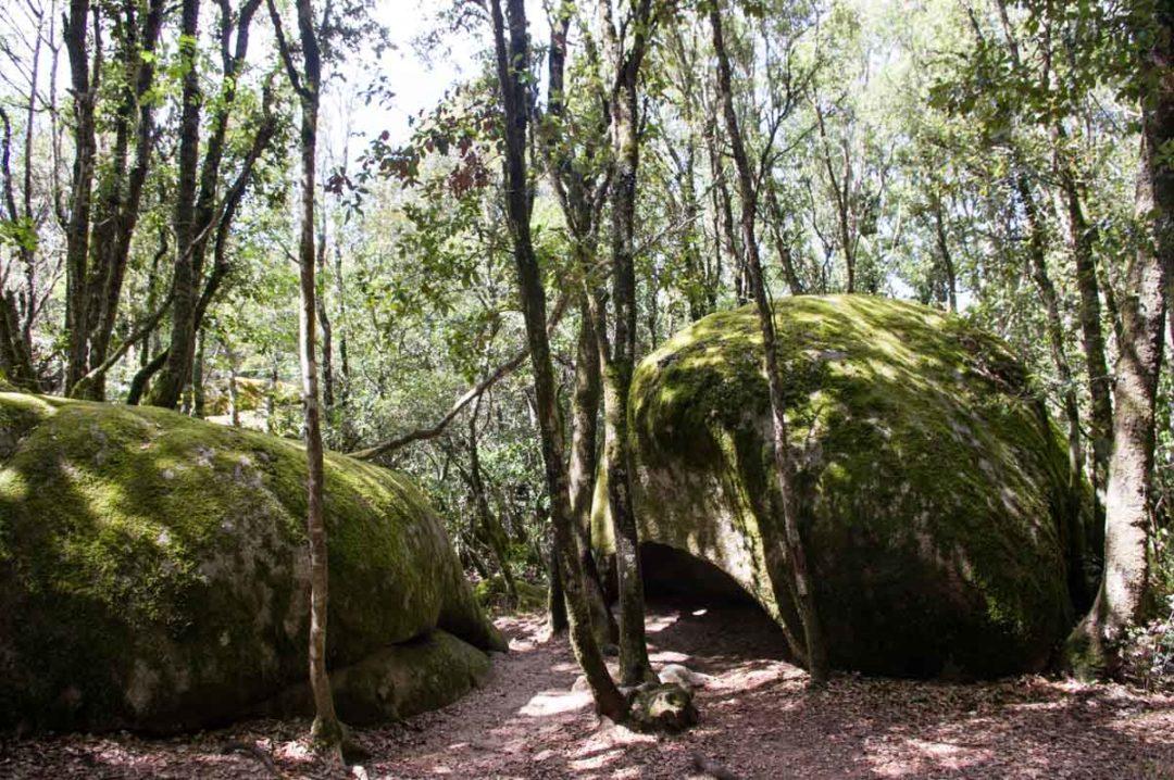 visite du site archéologique de Curcuzzu-Capula en Corse