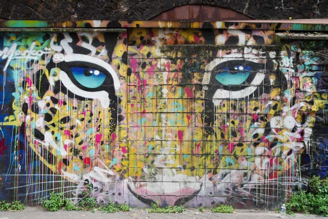 Leopard Rue de l'Ourcq à Paris
