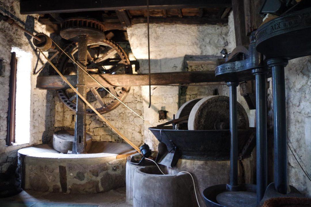 visite du moulin à huile de Sainte lucie de Tallano
