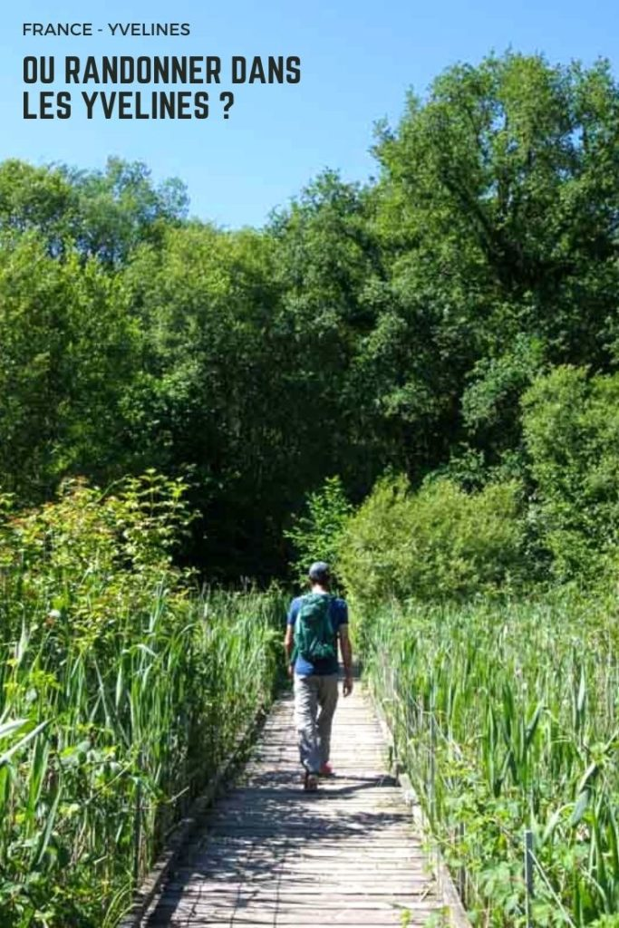 Où randonner dans les Yvelines ? Des itinéraires pour des balades faciles de quelques heures dans les sites naturels du département de la Forêt de Saint Germain à la Vallée de Chevreuse