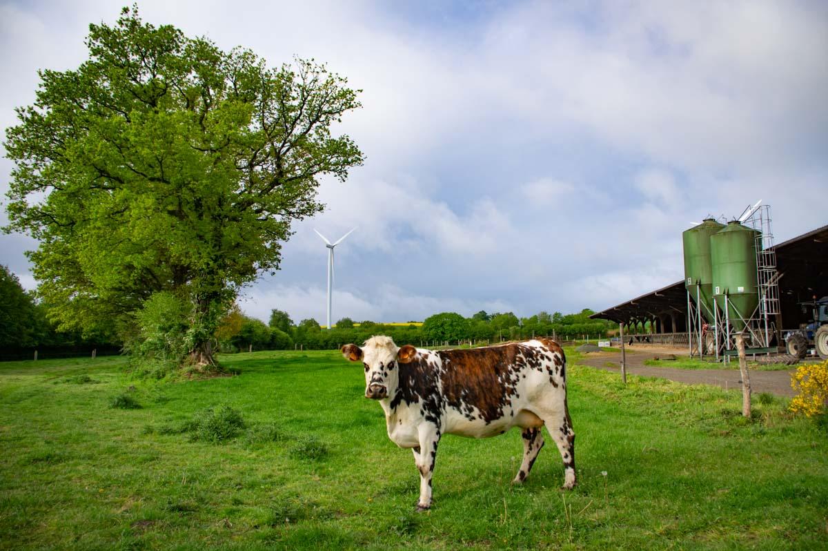 Accueil Paysan en Mayenne au Gite de la Ferme des Deux Vallées
