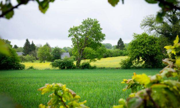 Un week-end à la ferme en Mayenne