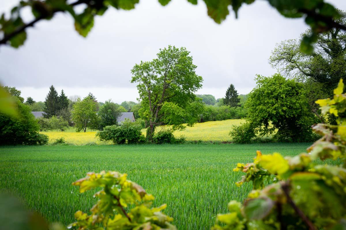 la campagne de la Mayenne