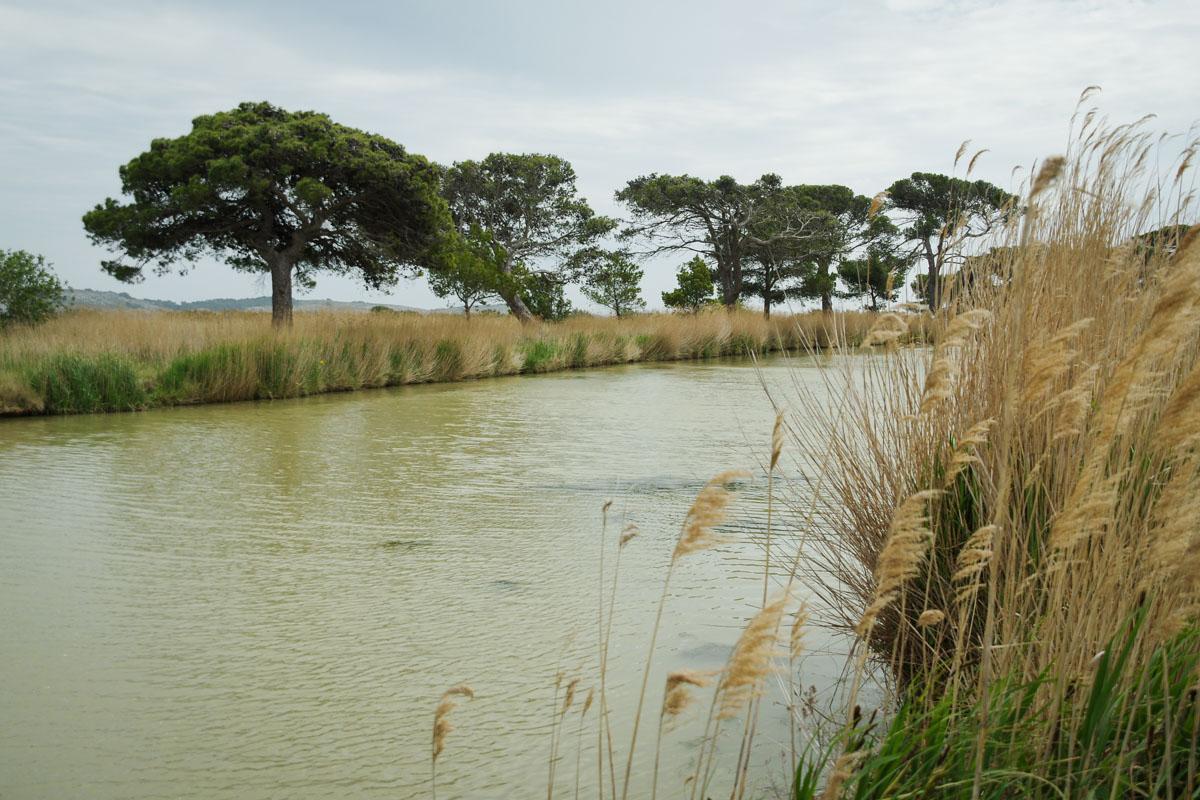 Canal de la Robine entre Narbonne et la méditerannée