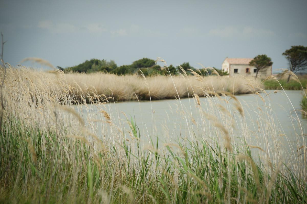 Le Canal de la Robine et les étangs du Narbonnais