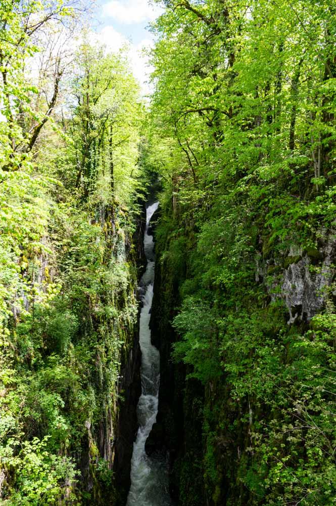Les Gorges de la Langouette dans le Jura