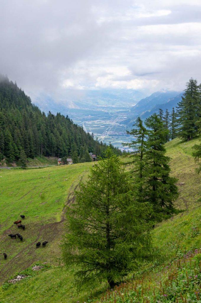 Point de vue sur la Vallée du Rhone
