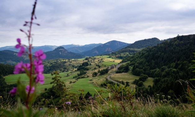 Que faire dans le Parc Naturel des Monts d'Ardèche ?