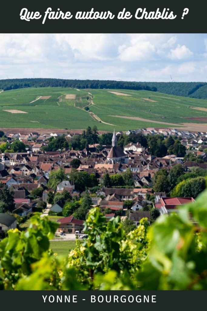 Que faire, que voir autour de Chablis ? Visite des vignobles, dégustation de vin, restaurants gastronomiques, découverte de villages de caractère et visite de châteaux de la  Renaissance